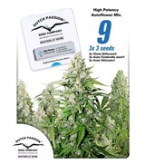 High Potency Autoflower Mix