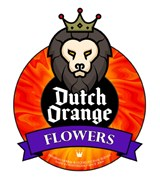Dutch Orange Flowers - NEW Formula