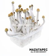 Mazatapec All In one Growkit