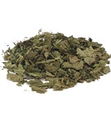 Salvia Divinorum - Leaves