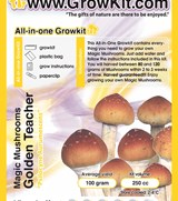 Small Golden Teacher All in one Growkit