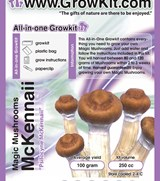 Small Mckennaii All In Growkit