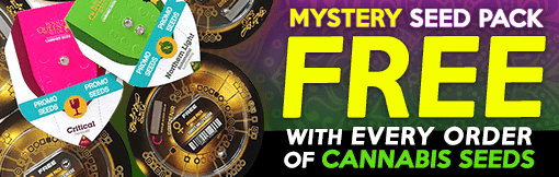 Order Now and receive a free Mystery Cannabis Seed Pack!