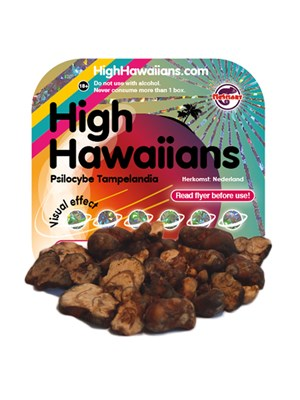 High Hawaiians - Psilocybe Tampelandia
